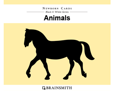 Animals newborn cards thumb