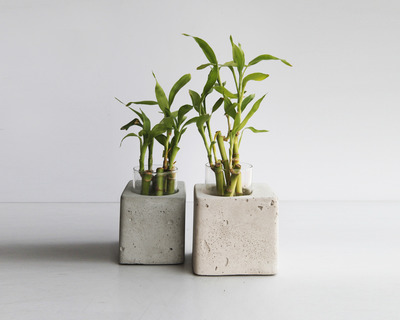Greenin table planter thumb