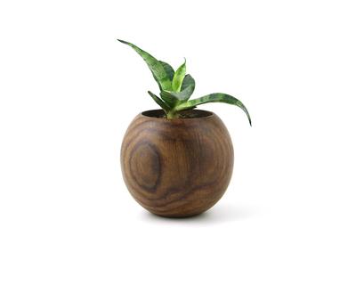 Ball planter thumb