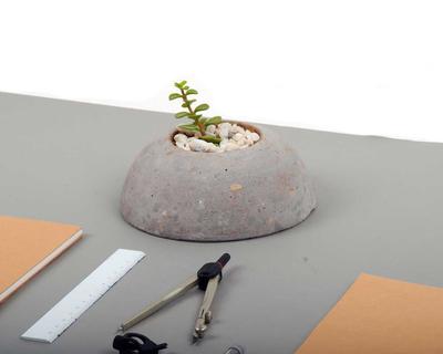 A round planter thumb