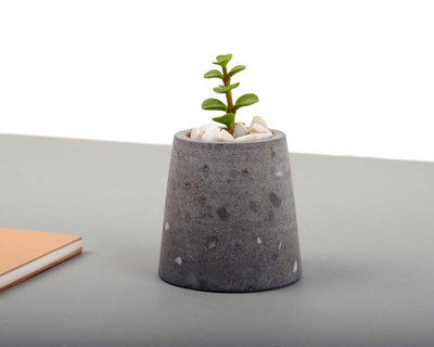 A pocket planter i thumb