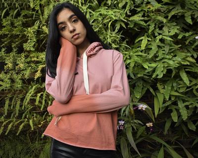 The eesha shaded hoodie thumb